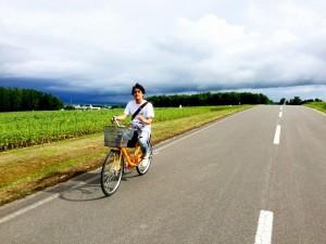 北海道 ひまわり畑